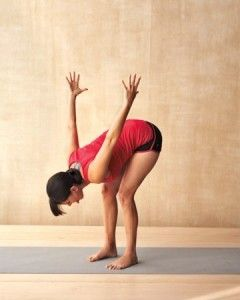 Taming the Lion Yoga move Dubai