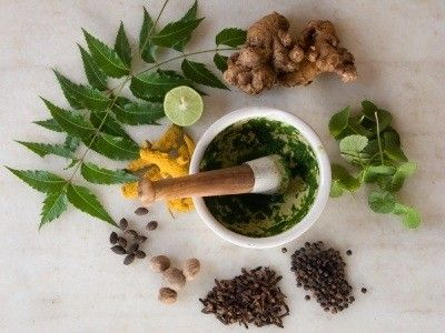 Did You Know About These Natural Herbs to Heal Scars?