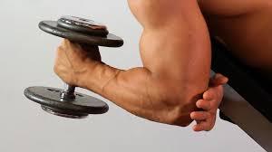 Fitness : Hammer Curls & Barbell Curls