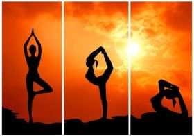 Essential Yoga Poses Everyone Should Practice