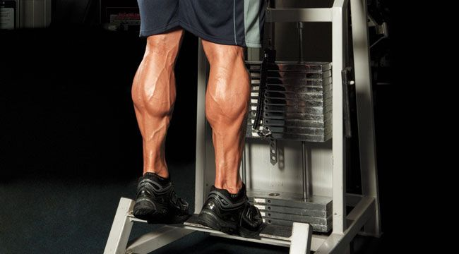 3 Calf Training Mistakes You Might be Making and how to Fix Them