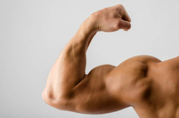 6 Calisthenics Exercises For Stronger Arms