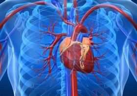 6 Causes Of Enlarged Heart
