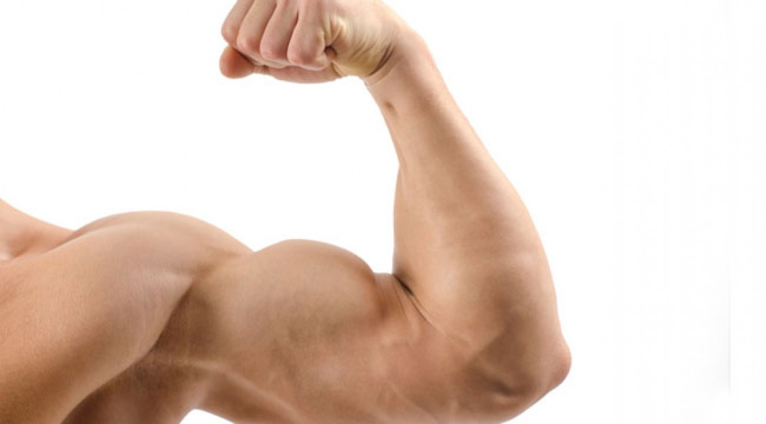 4 Exercises That Will Give You More Muscular Arm | Trainer