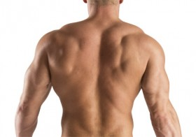 5 Tips on Building Back Muscles