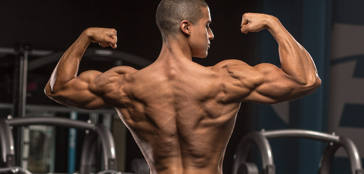 4 Best Exercises to Work on Your Lats