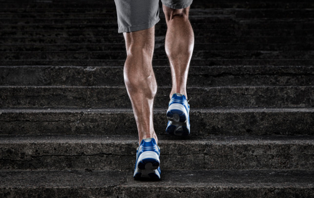 tone leg mucles