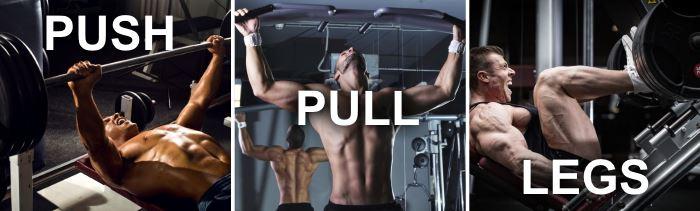 push pull leg