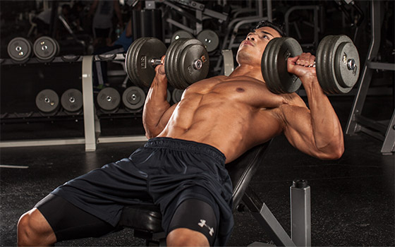4 Chest Workouts Every Beginner Must Know