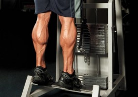 4 Reasons Why You Should Train Your Legs
